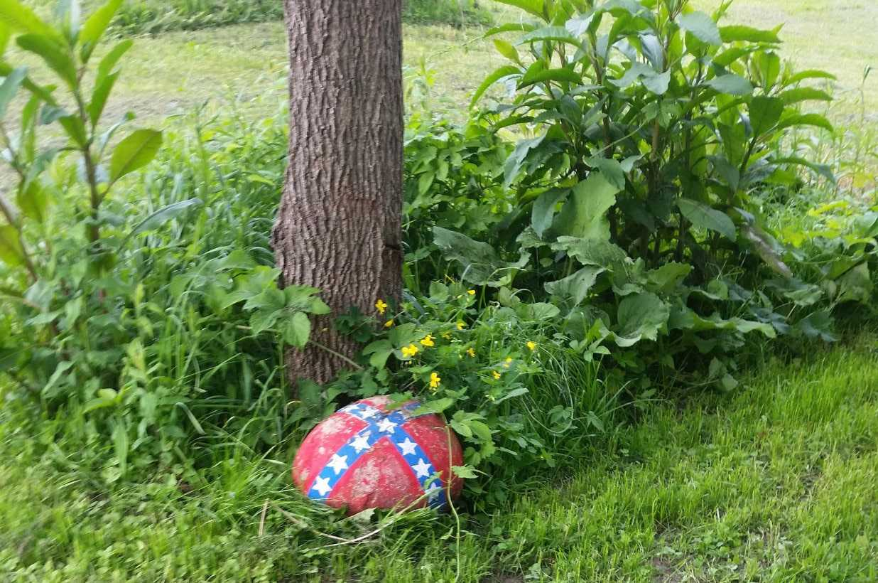 A New York mother has been ordered to dispose of a rock near her driveway bearing a small Confederate flag or risk losing custody of her mixed race child.
